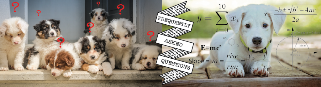 Pet Sitting FAQ