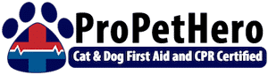 Pet First Aid and CPR Certification